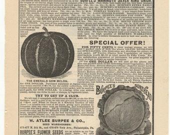 1888 Burpee Seeds Full Page Ad