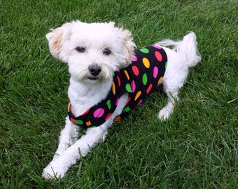 dog tee shirt, dog tank top, puppy clothes, dog tshirt, polka dot small dog shirt, dachshund clothes, dog clothing whippet, fun dog clothes