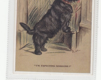 "Scottish Scottie Terrier Dog, A/S Lucy Dawson,""I'm Waiting For Someone"" Postcard"