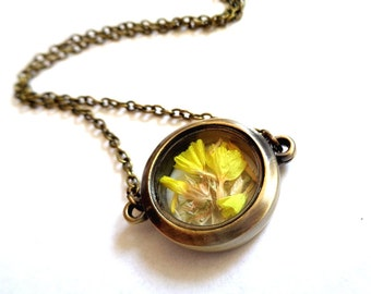 Bronze tone, bronze glass locket necklace with real flower statices yellow