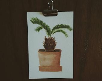 Sago Palm. Watercolor Paint, Cold Press Paper.