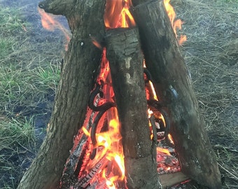 Fire Trees
