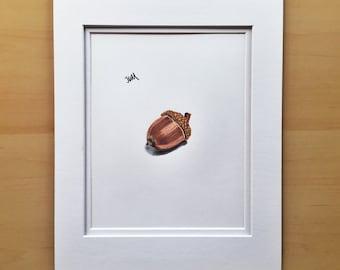Acorn drawing, wall art drawing, original drawing, Fall decor, colored pencil drawing, 11x14 drawing, housewarming gift