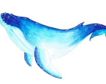 Humpback Whale A6 print