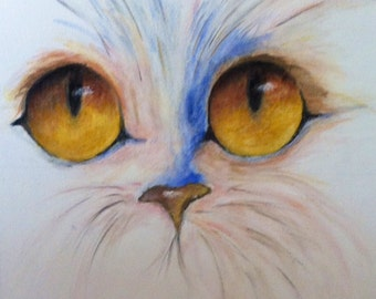 Cat eyes / table acrylic /Le chat / his eye/arts/France