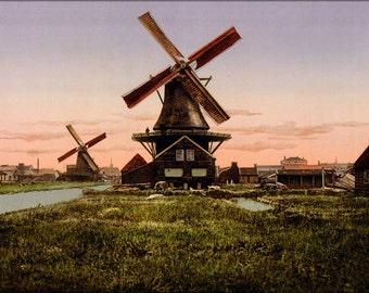 24x36 Poster . Dutch Windmills Netherlands Holland Photochrom C1905