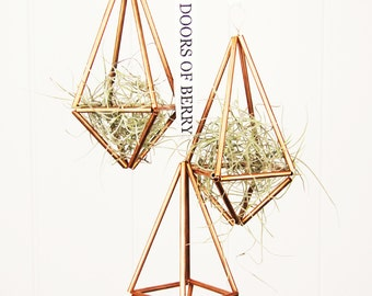 Set of 3 Himmeli Geometric Air Plant Prisms in Copper with FREE AIR PLANT by The Doors of Berry