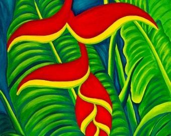 Haleconia Maui