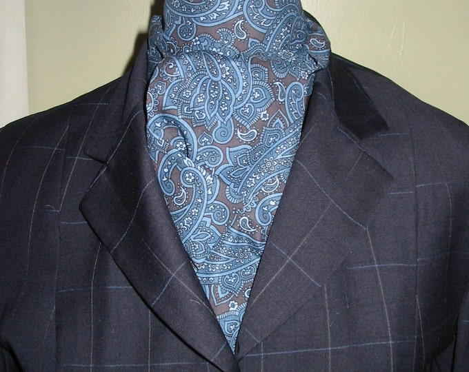 Blue and Chocolate Paisley Stock Tie