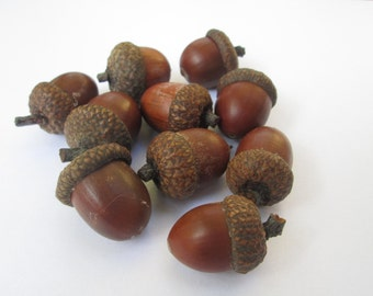 10 middle acorn for decoration. Natural acorns from the forest. Lacquered acorns for different decorations.