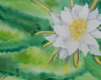 """SALE 40% Off Original Watercolor Painting, Night Blooming Cereus, 9"""" by 12"""""""