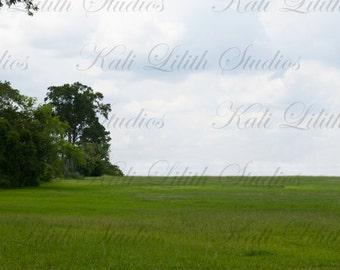 Grass field/Digital Backdrop/Open Field/Cloudy Sky/Digital Background/Background Stock/Instant Download