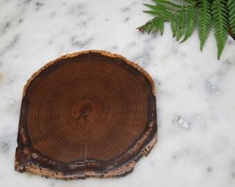 Slice of wood