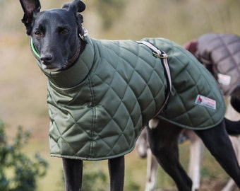 Quilted Hound Coat