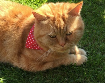 Small Polka dots cat bandana, pet accessory, red and white polka dot, cat gift, crazy cat lady