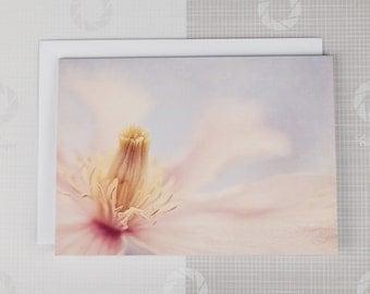 Pink floral close-up card