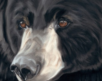 Black Bear Art Print, Wildlife Art, Cabin Decor, Animal Lover Gift - Fine Art Giclee Print of an Original Pawstel