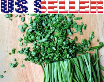 200+ ORGANIC Chives Seeds Heirloom NON-GMO Mild Onion Flavor Herb Delicious!!
