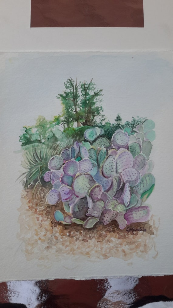 Framed Prickly Pear Cactus In Watercolor