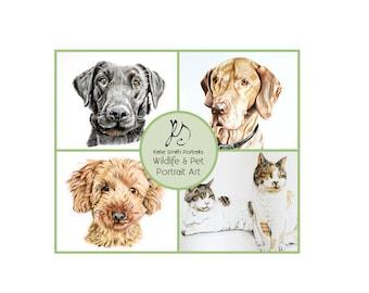 Custom Drawn Pet Portraits