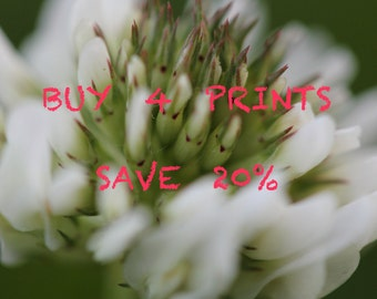 Buy Four Prints Save 20%, Multi-print discount, Four Print Set, Home Decor, Wall Art