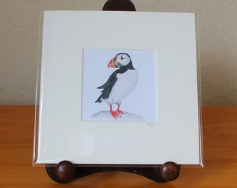 Puffin Print, Scottish Seabird Mounted Mini Print, Small Square Artwork, Ready for Framing (Frame not supplied).