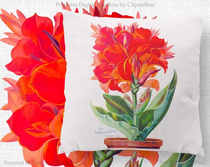 RED CANNA FLOWER Clipart Commercial Use Clipart Floral Digital Clipart Victorian Flower Fabric Transfer Image Iron on Transfer Image Jpg/Png