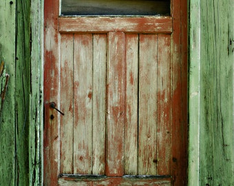 Rustic Wood Door Backdrop - painted peeled wood door - Printed Fabric Photography Background G1213
