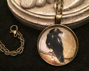 Edgar Allen Poe Raven Crow Bronze or Silver Pendant Necklace Gothic Victorian Literature
