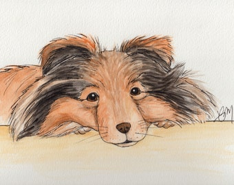 Original Sheltie / Collie Water Color Dog Portrait 12x9