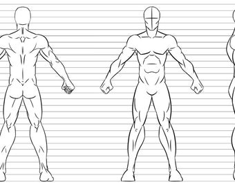 Character Design Base-Male