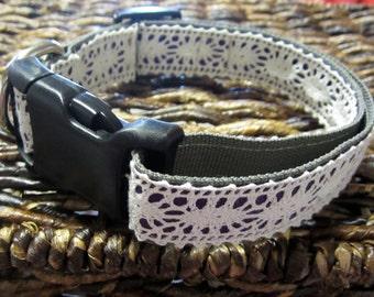 Lace Dog Collar