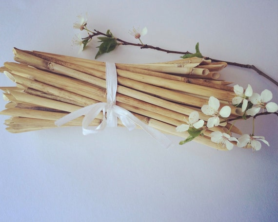 Dried reeds craft supplies reed bouquet floral for Dried flowers craft supplies