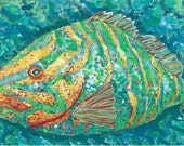 MOVING SALE!   Striped Fish Canvas Floor Mat