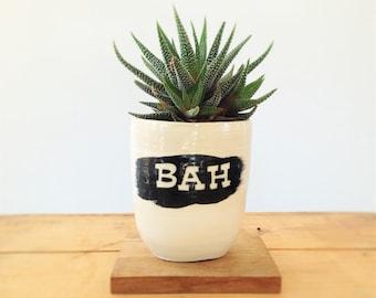 Pot à plante