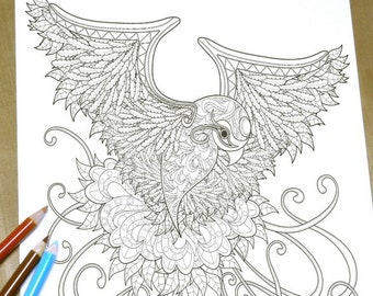 Elegant Bird - Adult Coloring Page Print