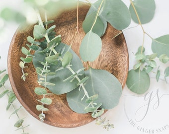 Styled Stock Photography | Eucalyptus in Wood Bowl | Floral Stock Photo | Blog Photography | Digital Imageh