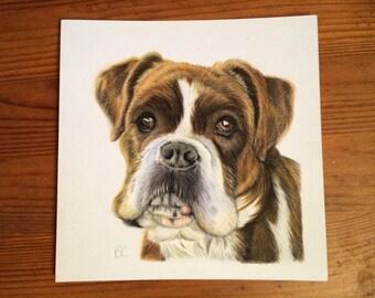 Custom Pet Portrait.