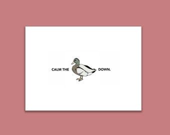 Calm The Duck Down Illustration Postcard