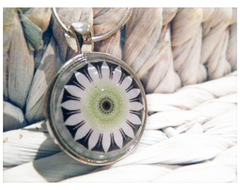 Pendant & Card: Flannel Flower