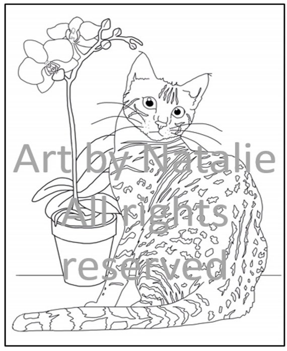 printable coloring page  bengal cat