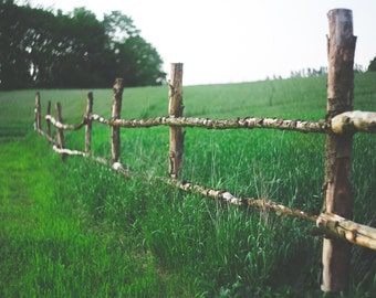Fence - Fence Photo - Pasture - Pasture Photo - Green - Field - Rural - Digital Photo - Digital Download - Instant Download - Home Decor