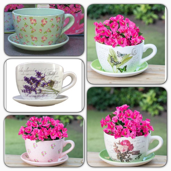 Items Similar To Giant Floral Design Tea Cup And Saucer Planter Flower Pot On Etsy