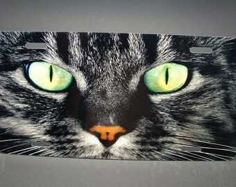 Cat Eyes Metal License Plate Tag For Cars And Suvs... Animal love... Cat Lovers...