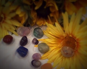 Sun Soaked Stones and Blessed Flowers Mixture