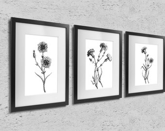 Carnations, set of 3 prints, modern scandinavian minimalist home decor