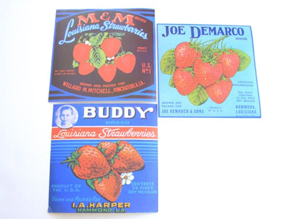 Set of 3 Vintage Strawberry Fruit Labels - General Store - Can Labels - Mixed Media - Ephemera - Altered Art - Assemblage - Scrapbooking