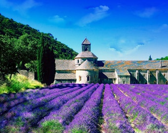 Fine Art Photo,Photography Provence, France home decor, Lavender in France,  photography,  Abbey de Senanque,landscape photography