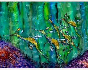 Weedy Sea Dragons, Marine Life and Ocean Fine Art Giclee Prints for the Beach House or Cottage walls
