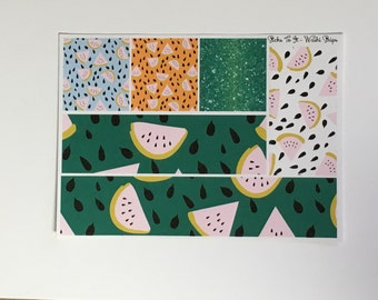 Summer MelonYour Own Kit Washi Strips Erin Condren ECLP Mambi Inkwell Press Filofax Kikki K Happy Life Watermelon Stickers